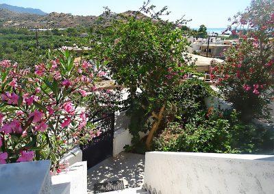 villa-elena-3-1