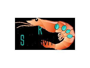 Cyber Shrimp